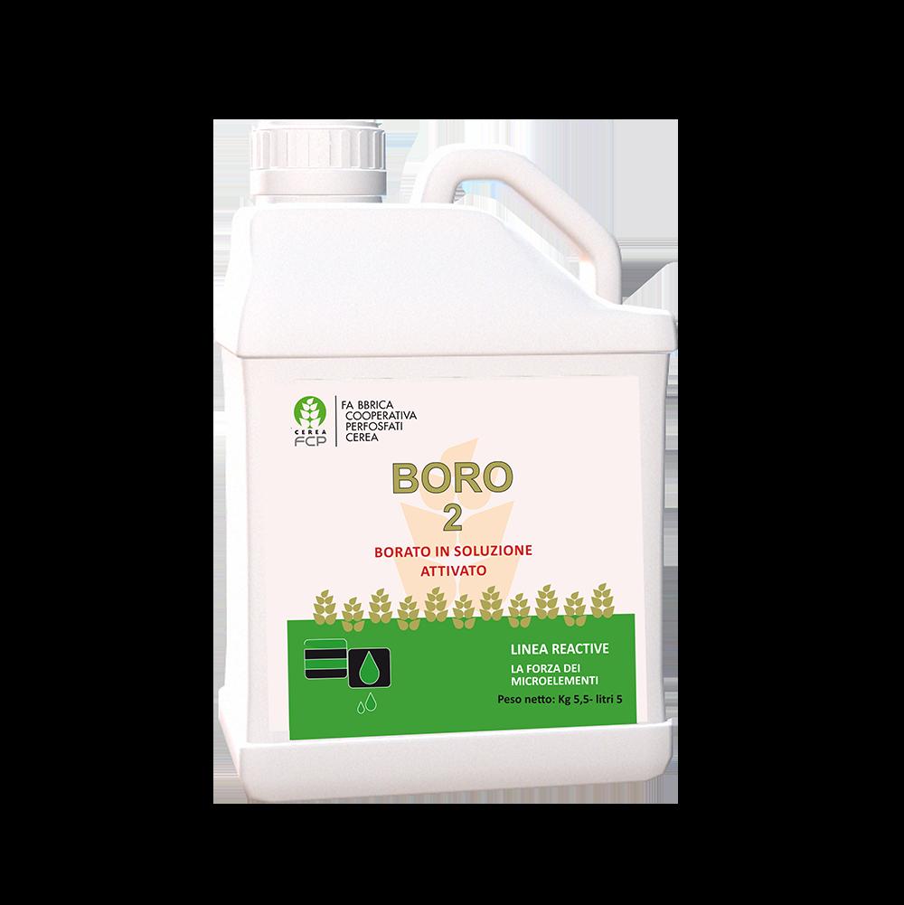Boro 2
