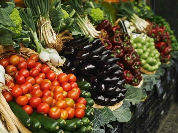 Овощеводство: удовлетворить потребности рынка
