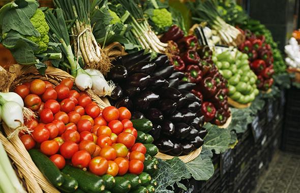 La horticultura: un mercado al que satisfacer