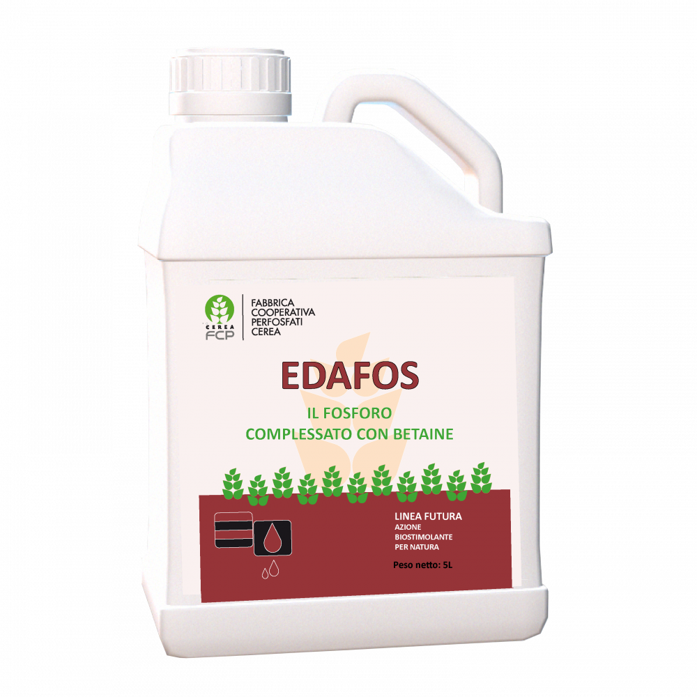 Edafos